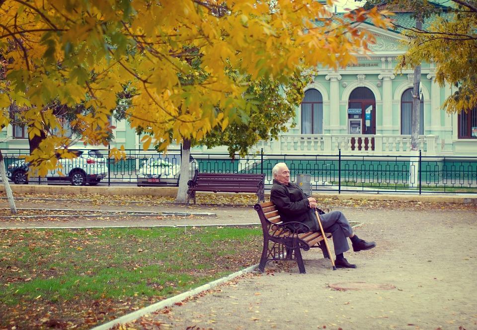Gijom Muso-Central Park Pensioner