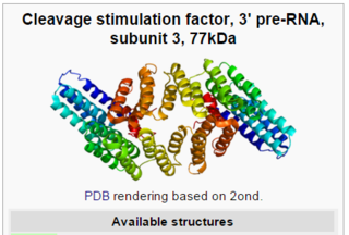 The RNA polymerase enzyme and its function, evidence of design CSTF3_Wikipedia_the_free_encyclopedia