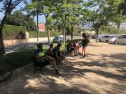 Tag asnobike en BTTCARTAGENA ASNOBIKE Veracruz_2018_asnobike_14