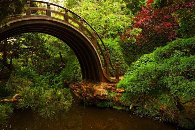 Mostovi              012
