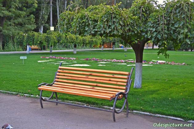 Gijom Muso-Central Park -1024x683