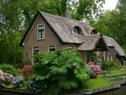 Holandija             2539678_1465151