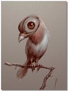 VERVE : pour les Artistes  MAIS pas seulement.... hallucinant ! - Page 2 Bird