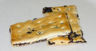 Dish of the Day - Page 8 Garibaldi_biscuit_zpsfekanc1u