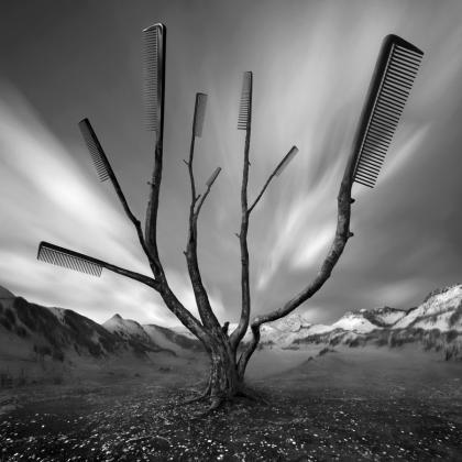 Goran Tribuson-Dublja strana zaljeva - Page 2 Dandruff_tree_by_kleemass-d5eoint