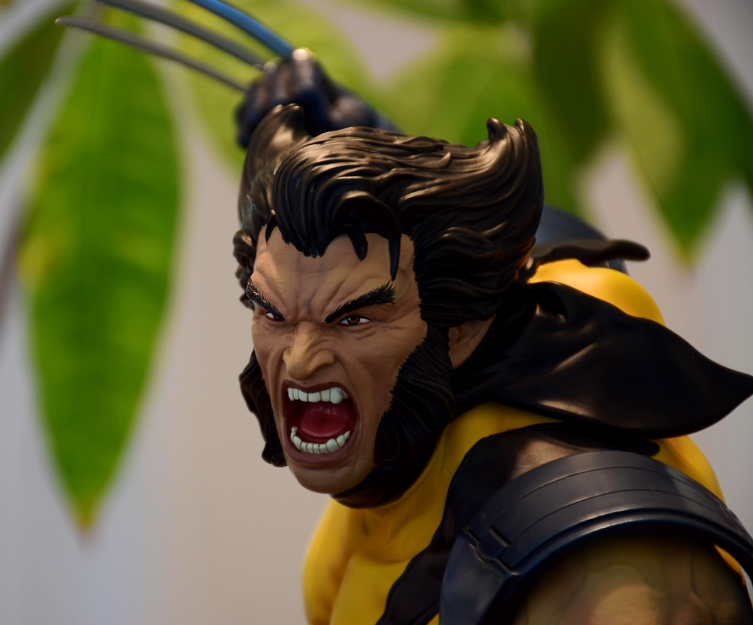 Premium Collectibles : Wolverine - Comics Version - Page 11 W15