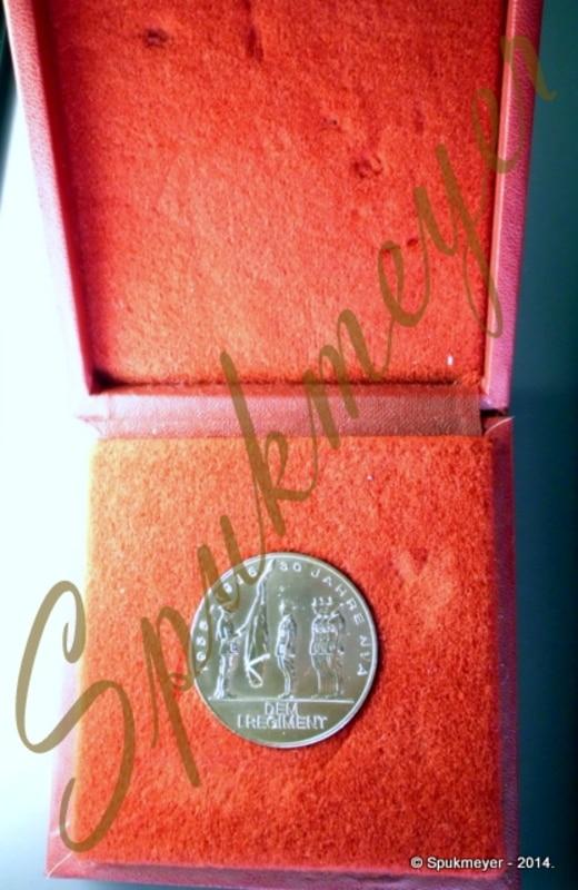 Medalla de mano del 30 aniversario del NVA. DSCI0187