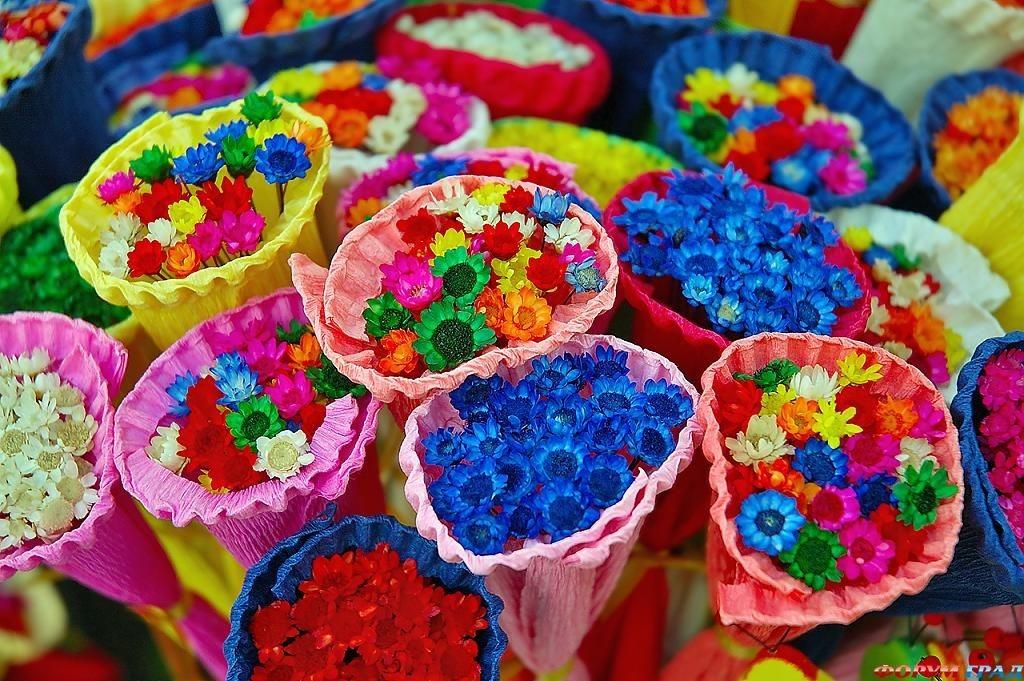 Zov anđela-Gijom Muso Yarkie-cvety