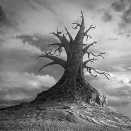 Čuješ li nas Frido Štern - Goran Tribuson Gigantree_by_kleemass-d5nl7al