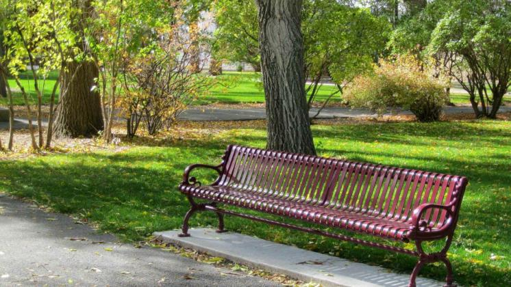 Gijom Muso-Central Park - Page 2 Wallpaper-create-bench-park-image