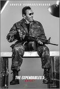 The Expendables 3 (Los Mercenarios 3) 2014 - Página 7 Arnold