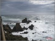 (01/03/14) Ruta BTT por Cabo de Gata. Bttcartagena_en_Cabo_gata_57