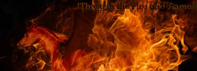 TFF -Hotseat Rules and List of Players Through_the_fire_and_flames_by_sasku12_d3gyz2i