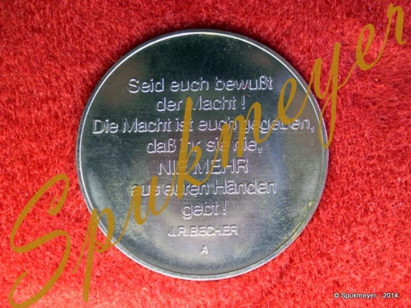 Medalla de mano del 30 aniversario del NVA. DSCI0189