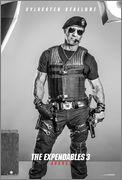 The Expendables 3 (Los Mercenarios 3) 2014 - Página 7 Stallone