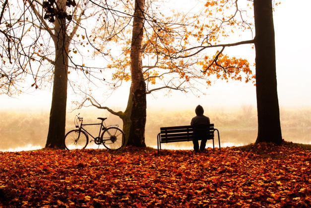 Gijom Muso-Central Park -_-