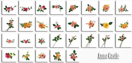 Клипарты  ::  Цветы-разные 26138b4f3818