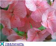 Распродажа-Астана 7bb0a62cc491t