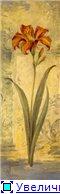 Цветы, букеты B67a127d21bdt