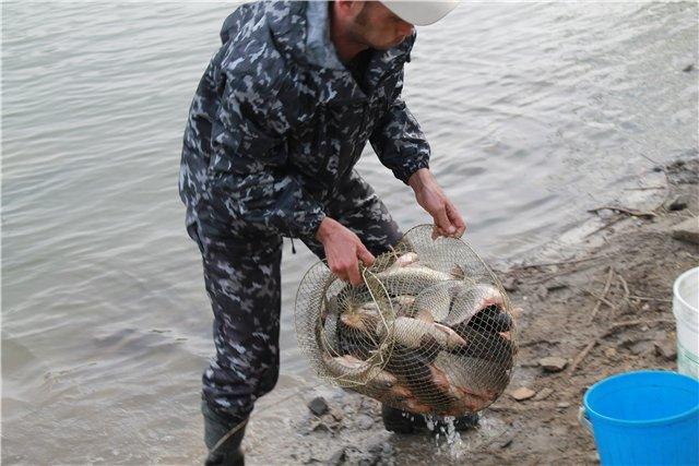 Рыбалка 236b85770a2f