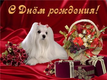 Поздравляем с Днем Рождения Елену (Елена Зубкова) 089db9574fd4t