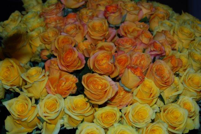 Международая выставка «Цветы.Ландшафт .Усадьба 2010» Астана - Страница 4 70745a09bf91