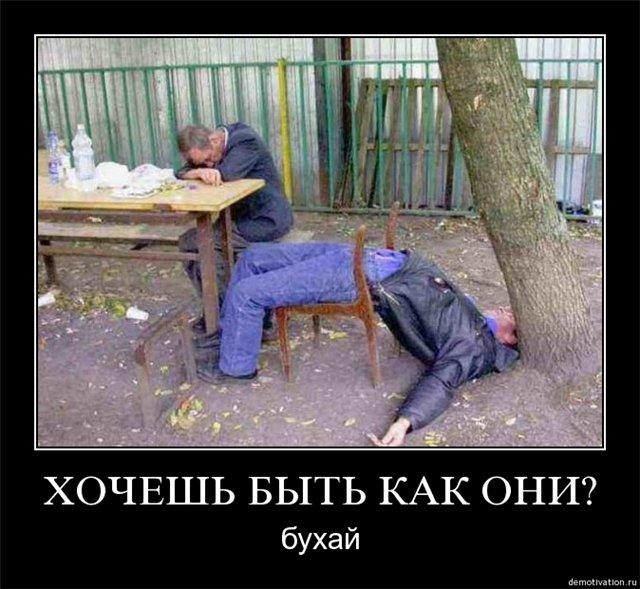 Картинко на тему алкголизьма!!! E6d6afd679e8