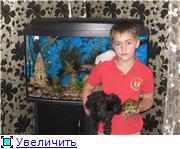 """Фотоконкурс """"Ребятушки и зверятушки"""" - Страница 2 Cff075715455t"""
