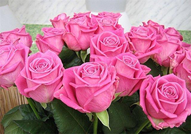 Поздравляем Людмилу(Ludmila_S) с днем рождения!!!!! 4b24a601f464