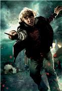Гарри Поттер и Дары Смерти: Часть первая / Harry Potter and the Deathly Hallows: Part 1 (Уотсон, Гринт, Рэдклифф, 2010) 3e2e9c2d1dfbt