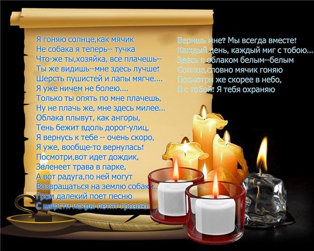 ПОГИБ...ВОСТОЧНО-ЕВРОПЕЙСКАЯ ОВЧАРКА ВЕОЛАР ЛОРД ЛИ-ГАРД 842ff65f7300