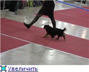 ЕВРАЗИЯ - 2012 5eefc866dd79t