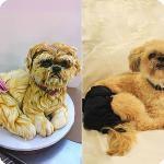 Собачьи кулинарные рецепты - Страница 2 6bd1399db39f