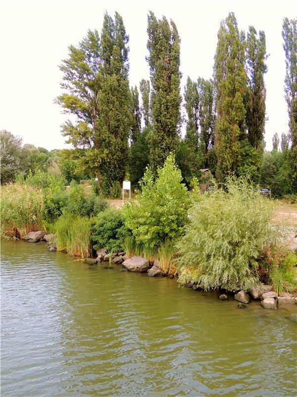 Фотографии рек и речных судов 74164aab1621