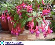 Рыськино СЧАСТЬЕ 0cb98a806a85t