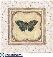Животные, птицы и насекомые 1a288b748be8t