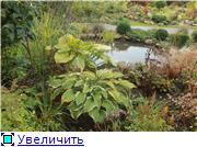Cад Людмилы Ивановой из черкасс 623db1c78ca2t