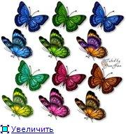 Животные, птицы и насекомые 48aba1702553t