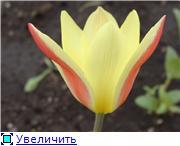 Изучаем основы Фотошопа - Страница 3 F011ab2736aat