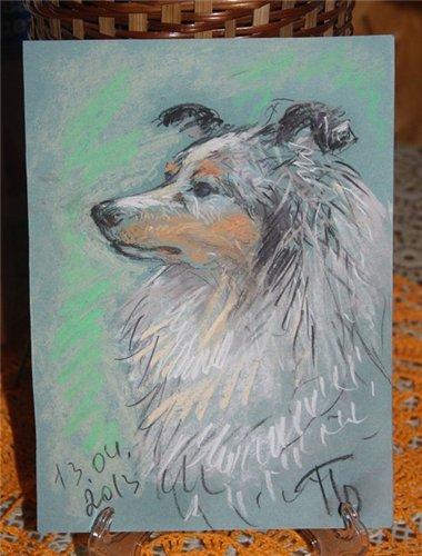 Рисую собак по фото - Страница 6 E6115e36b96e
