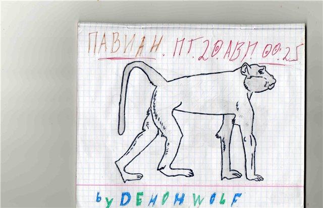 Творча Дьявола E83f04a8bdc4