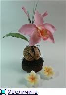 Цветы ручной работы из полимерной глины - Страница 3 Bb002ea8bad1t