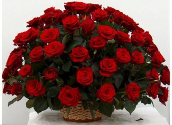 Светочка-Украиночка))) С днем рождения)))!!!!! 43b5e5d9ea4f3824582856aa2e9a17ae