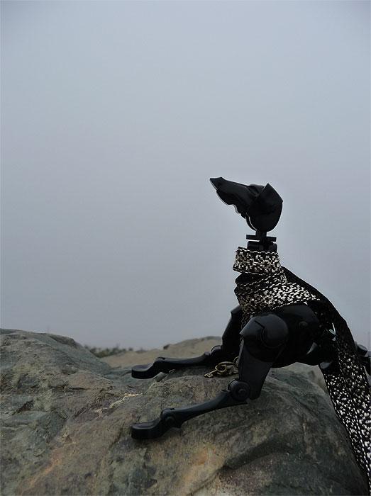 Obitsu Dogs - Страница 2 89fa9fedbeeae5bb188c23a1ec2f56c0
