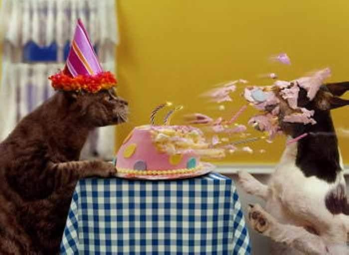 Поздравляем Osa с Днём рождения! - Страница 3 60ae5af7ae7629a6a9e8659fba4b0391