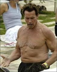 Arnold is back 095022_153184411_arnold_schwarzenegger_fat1_answ