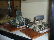 VII Межрегиональная выставка стендового моделизма, исторической и игровой миниатюры  P1110065