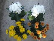 Crizanteme&Tufănele  (temă pentru Ionuţ ) - Pagina 2 024