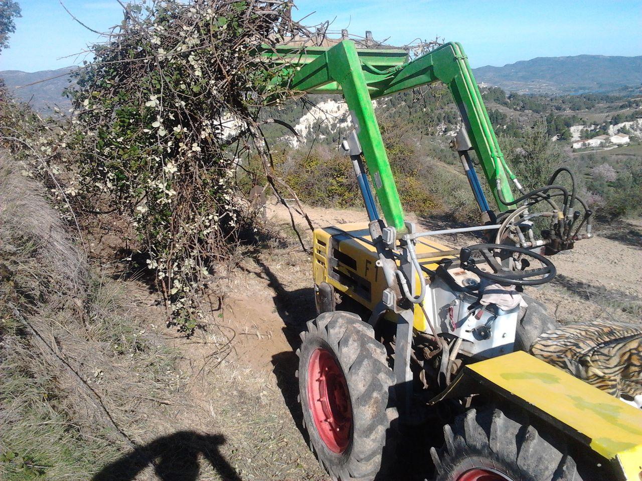 [Pasquali 989] Unas fotillos y vídeo de mi tractor 2013_02_01_11_49_25