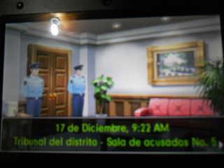 Traduccion Ace Attorney dual destinies DSCN1724